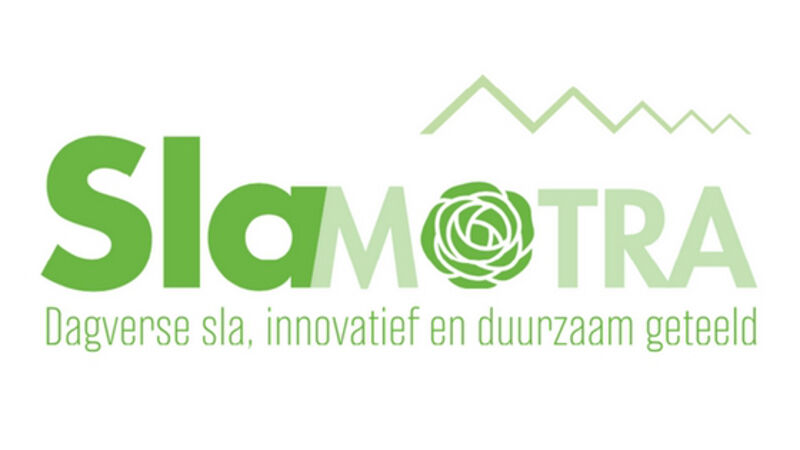 GroentenNieuws: Slamotra verhoogt lichtintensiteit met nieuwe Oreon Grow Light 3.0