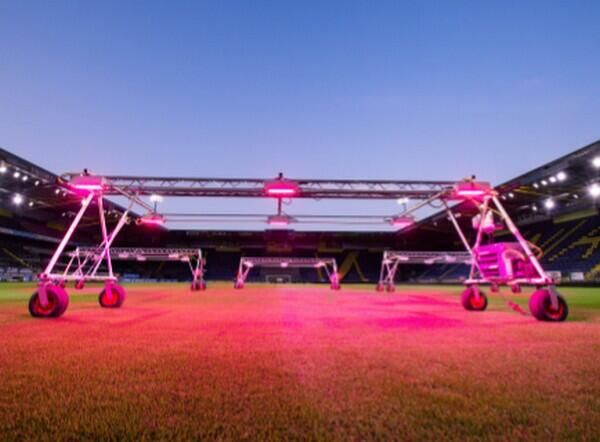 HortiDaily: LED grow lights in NAC Breda stadium