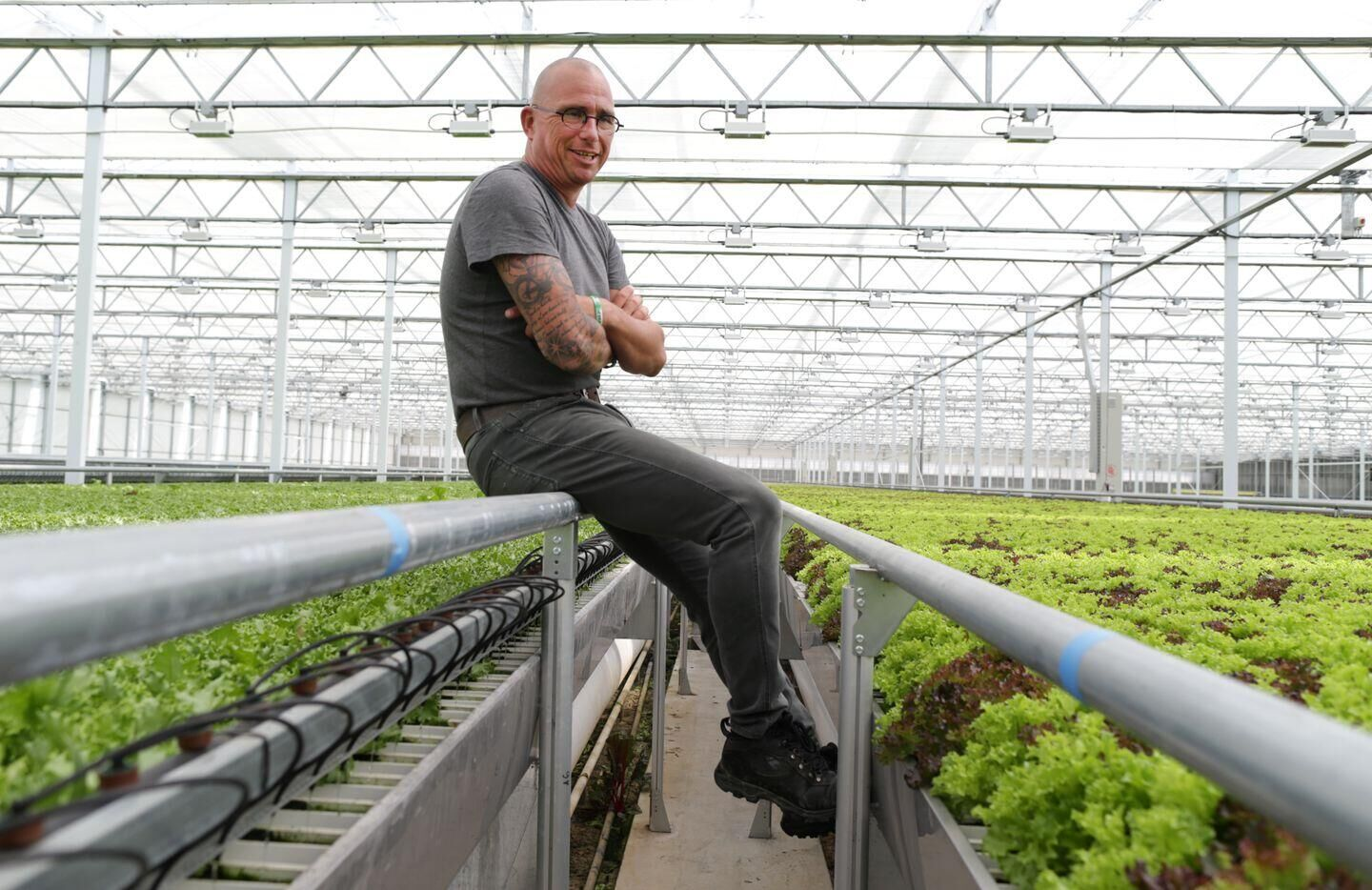 InGreenhouses: This greenhouse has everything a grower could dream of!