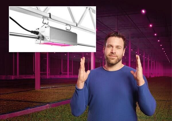 MMJDaily: Oreon launches 1000W LED fixture for greenhouse horticulture
