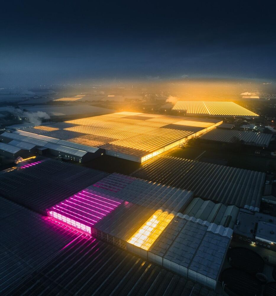 Photographer takes to the sky to capture Hollands' LED greenhouses