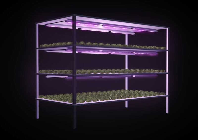 Plant propagation lighting
